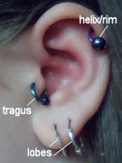 Left Ear Piercings